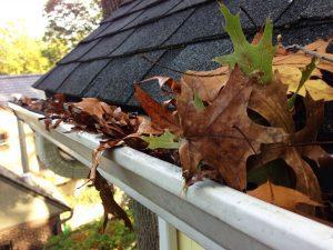 Roofers Dublin Gutter Maintenance
